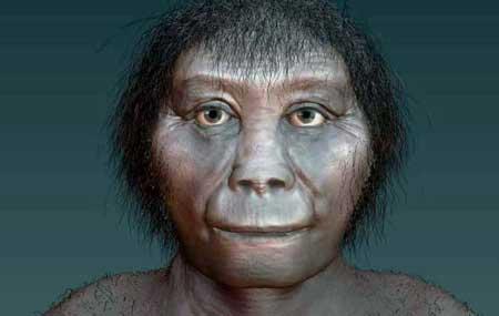 Homo Floresiensis